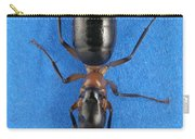Field Ant Carry-all Pouch