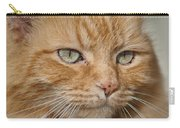 Fierce Warrior Kitty Carry-all Pouch