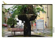 Fig Tree Fountain In Cassis Carry-all Pouch
