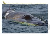 Fin Whale Charging Carry-all Pouch