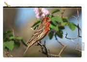 Finch In Lilac Bush Carry-all Pouch