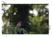 Finch In The Willow Carry-all Pouch