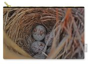 Finch Nest With Eggs  Carry-all Pouch