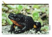 Fire-bellied Frog Atelopus Ignescens Carry-all Pouch