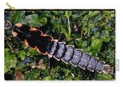 Firefly Larva Carry-all Pouch