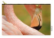Flamingo Carry-all Pouch by Carlos Caetano