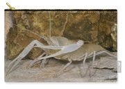 Florida Cave Crayfish Carry-all Pouch