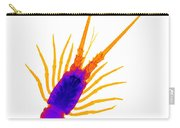 Florida Spiny Lobster X-ray Carry-all Pouch