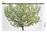 Flowering Apple Tree Carry-all Pouch by Elena Elisseeva