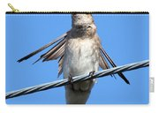Fluttering Swallow Carry-all Pouch