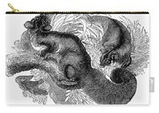 Flying Squirrel Carry-all Pouch