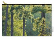 Forest Illumination At Sunset Carry-all Pouch