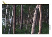 Forest, Shore Of Lake Superior Carry-all Pouch
