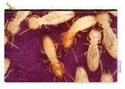 Formosan Termites Carry-all Pouch by Science Source