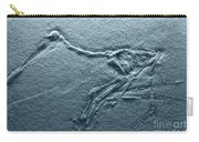 Fossils - Pterosaurs Carry-all Pouch