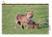 Fox And Baby Carry-all Pouch