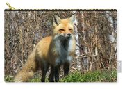 Fox And Birches Carry-all Pouch