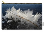Fractal Frosty Ice Crystals Carry-all Pouch