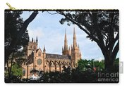 Framed Cathedral Carry-all Pouch