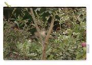 Framed V2 Carry-all Pouch