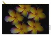 Frangipani Circle Of Color Carry-all Pouch