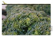 Fresh Broccoli Carry-all Pouch by Susan Herber