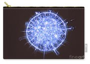 Freshwater Heliozoan Carry-all Pouch