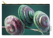 Fruits Of Wild Lucerne Carry-all Pouch by Nuridsany et Perennou and Photo Researchers