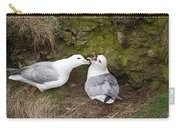 Fulmar Pair Bonding Carry-all Pouch