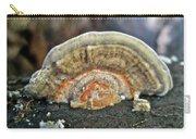 Fuzzy Turkey Tail Shelf Fungus - Trametes Ochracea Carry-all Pouch