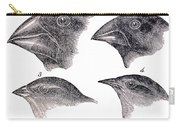 Galapagos Finches Carry-all Pouch