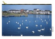 Galway, County Galway, Ireland Carry-all Pouch