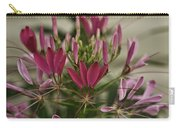 Garden Stinkweed Flower 1 Carry-all Pouch