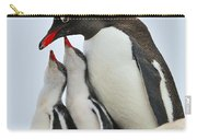 Gentoo Feeding Time Carry-all Pouch by Tony Beck