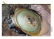 Giant Keyhole Limpet Carry-all Pouch