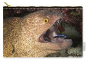 Giant Moray Eel And Cleaner Wrasse Carry-all Pouch