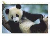 Giant Panda Cub Resting In A Tree Carry-all Pouch