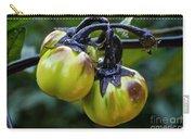 Gilo Black Stem Carry-all Pouch