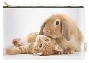 Ginger Kitten Lying With Sandy Lionhead Carry-all Pouch