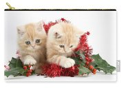 Ginger Kittens Carry-all Pouch