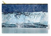 Glacier Face Carry-all Pouch