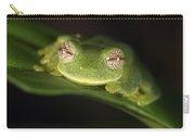 Glass Frog Centrolene Tayrona, Sierra Carry-all Pouch