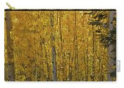 Glorious Aspens Carry-all Pouch