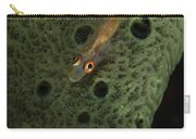 Goby On A Sponge, Fiji Carry-all Pouch