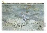 Goby With A Hermit Crab, Australia Carry-all Pouch