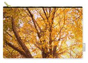 Golden Autumn View Carry-all Pouch