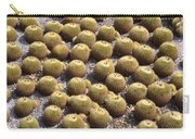 Golden Barrel Cactus 1 Carry-all Pouch