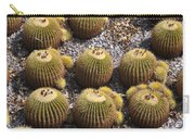 Golden Barrel Cactus 2 Carry-all Pouch