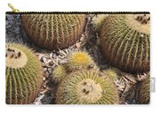 Golden Barrel Cactus 3 Carry-all Pouch