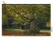 Golden Cappadocian Maple. Carry-all Pouch
